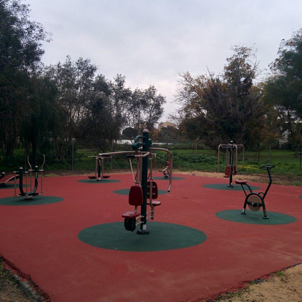 מתקני כושר בגן ציבורי